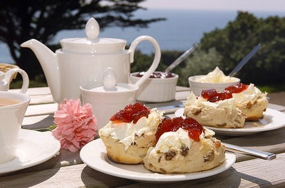 Devon Cream Tea vs Cornish Pasty | John Fowler Cornwall Holiday Parks