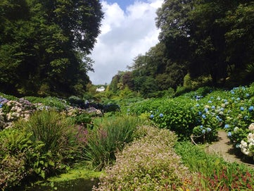 Trebah Gardens | 5 Dog Friendly Days Out Cornwall