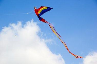 Burnham-on-Sea Kite Festival | John Fowler Somerset Holiday Parks