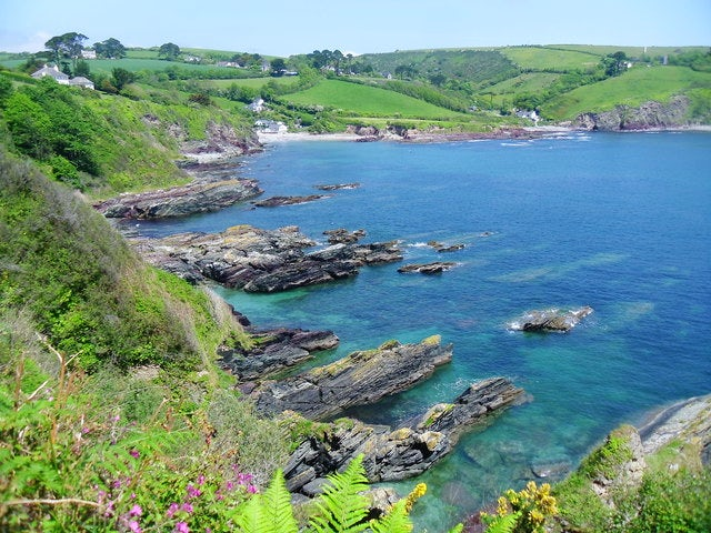 Talland Bay | Rock Pooling in Cornwall