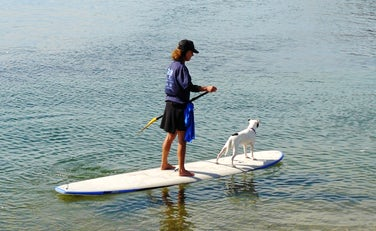 Stand Up Paddleboarding | Dog Friendly Water Sports