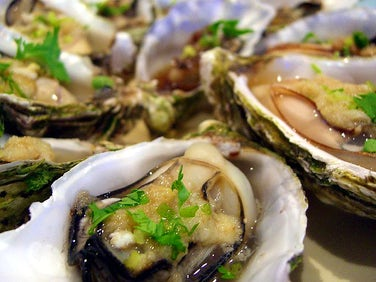 Falmouth Oyster Festival | 4 Must-Visit Cornwall Events This October
